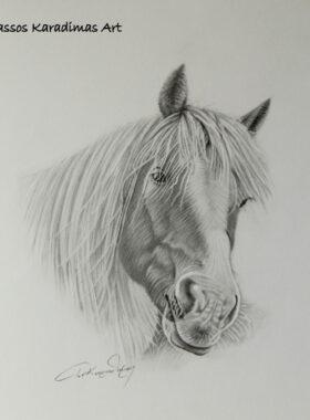 Σκίτσο Άλογο